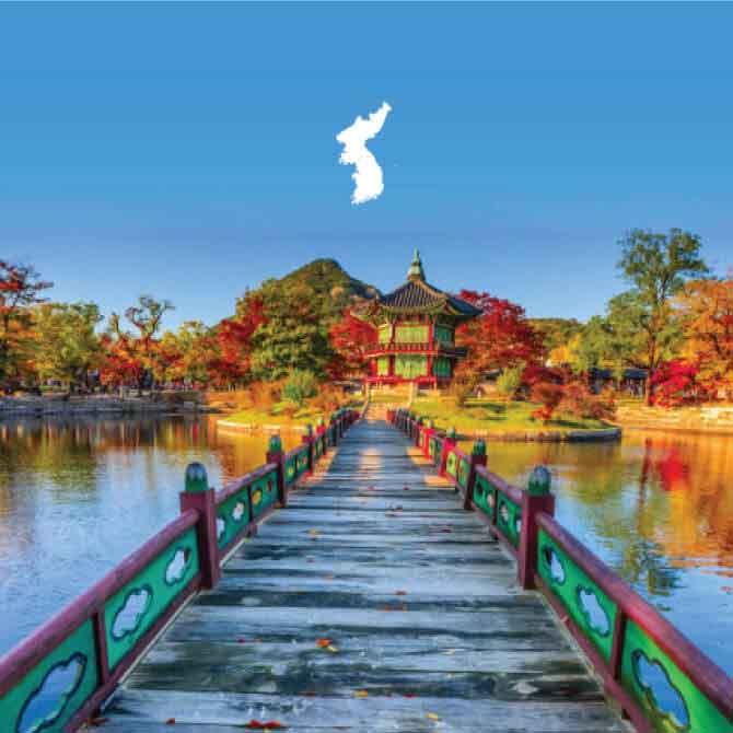 Guía Working Holiday Corea