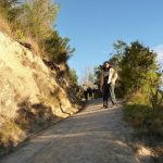 nelson rai valley nueva zelanda