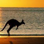 australia-work-and-travel