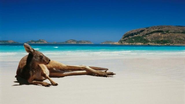 curiosidades-australia