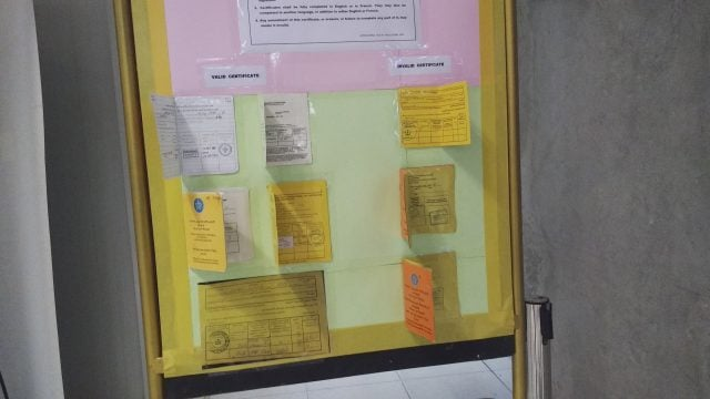 certificados fiebre amarilla tailandia