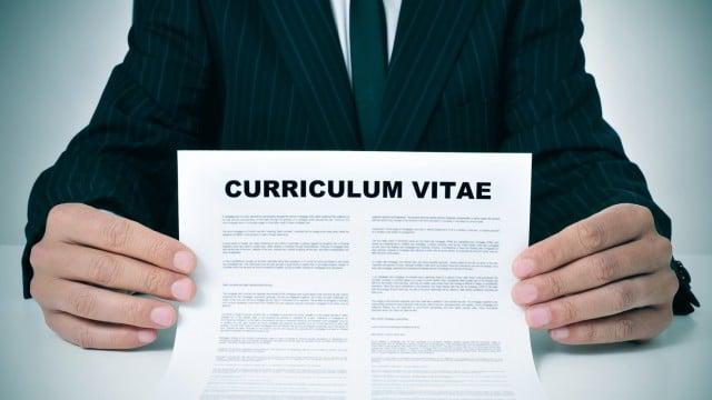 curriculum vitae nueva zelanda