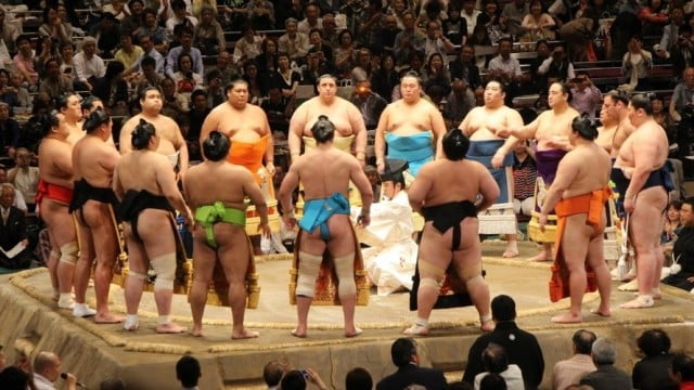 viaje por japon sumo
