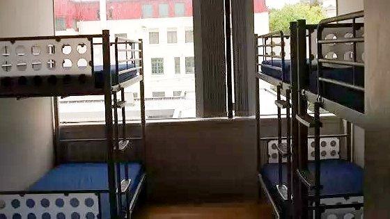 hostel alojamiento auckland choice backpacker