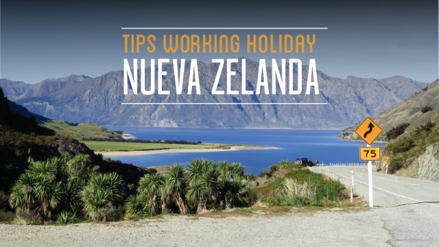 tips working holiday nueva zelanda