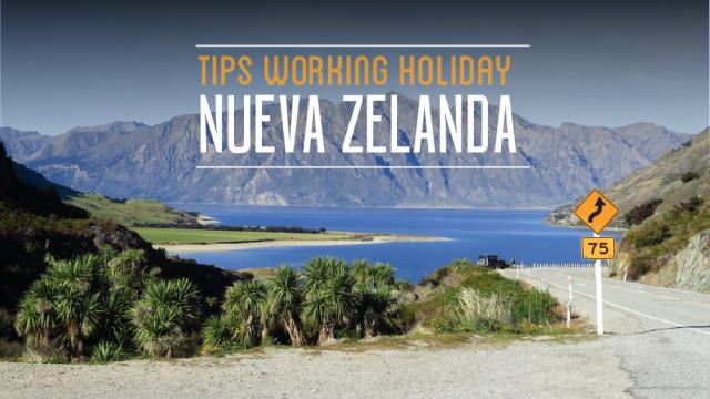 tips working holiday nueva zelanda