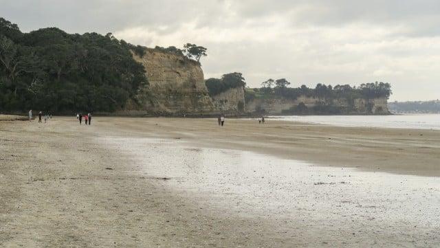 long bay nueva zelanda