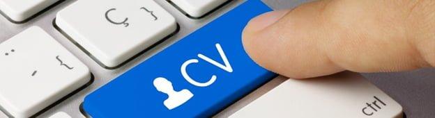 cv-trabajar-dinamarca
