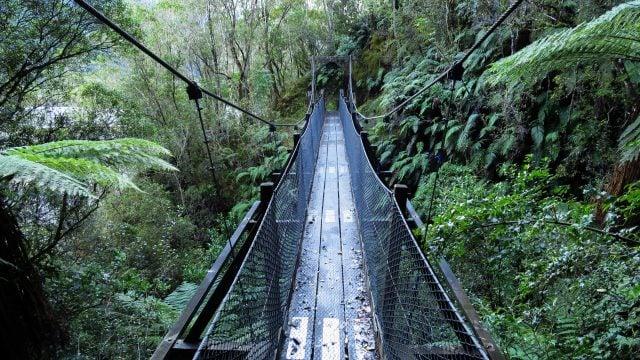 puentes franz josef nueva zelanda