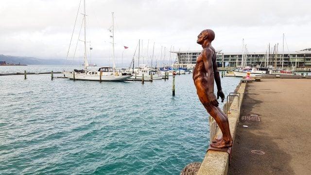 puerto wellington nueva zelanda