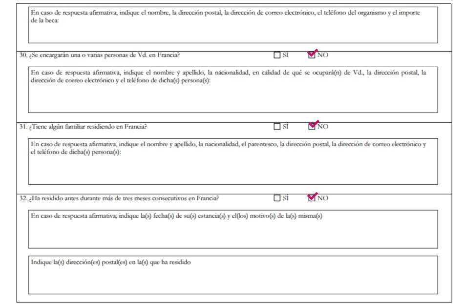 working holiday francia formulario