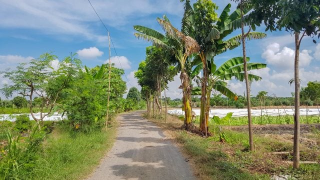 kuta lombok caminos indonesia