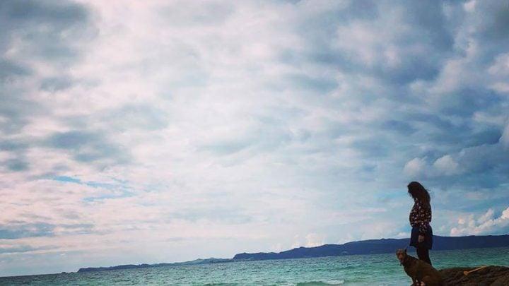 Viviendo la experiencia working holiday Nueva Zelanda