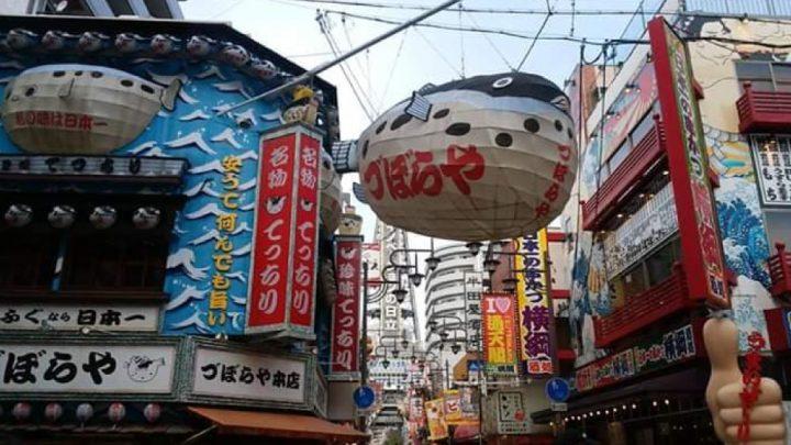 Japón experiencia working holiday