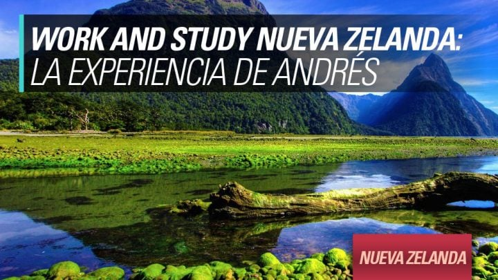 experiencia work and study