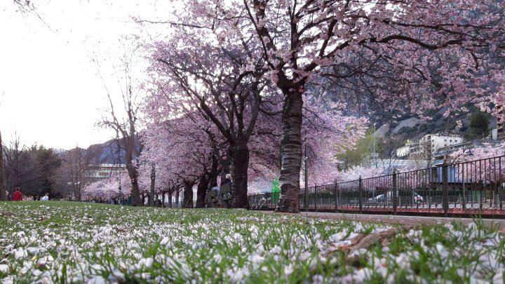 andorra en primavera