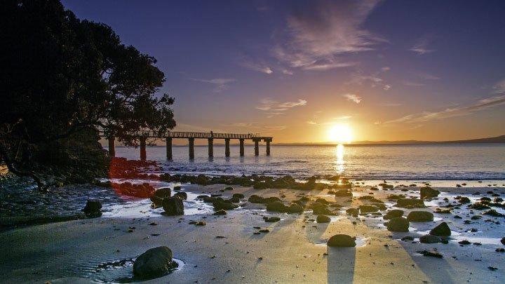 auckland playa