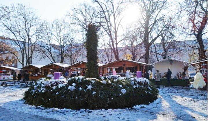 melania nieve