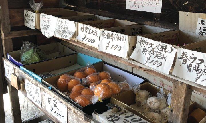 verduleria japon