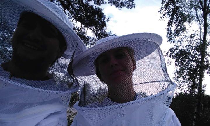 nico apicultura