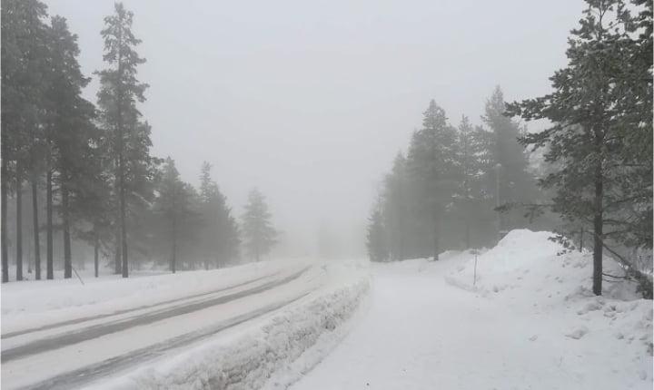 paisaje nevado fede